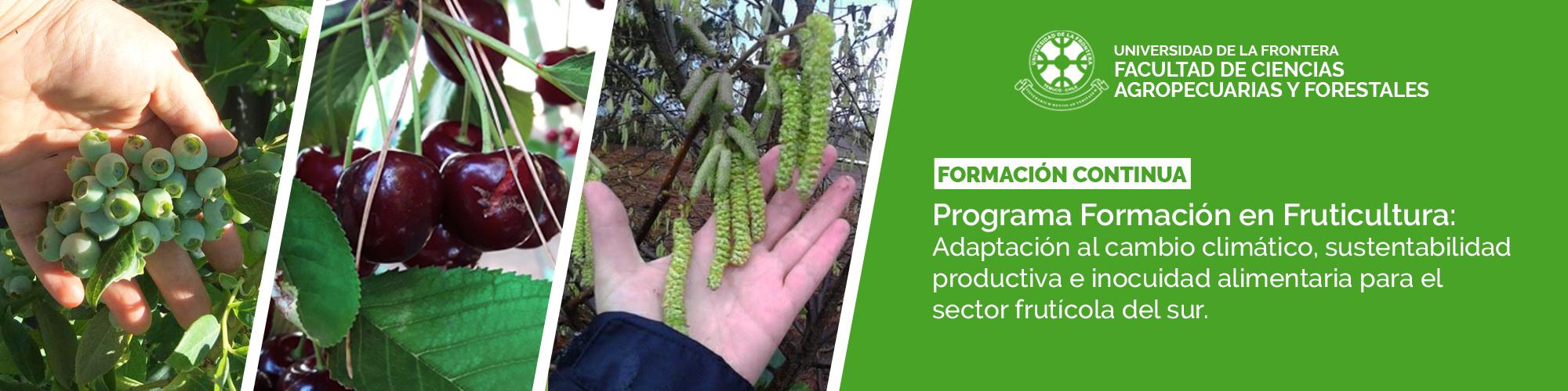 Diplomado en Fruticultura